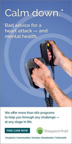 Sheppard Pratt Health Systems Campaign