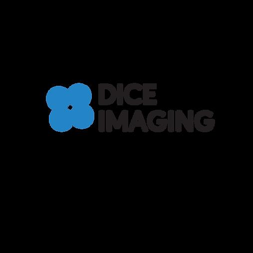 dice imaging logo 3.png