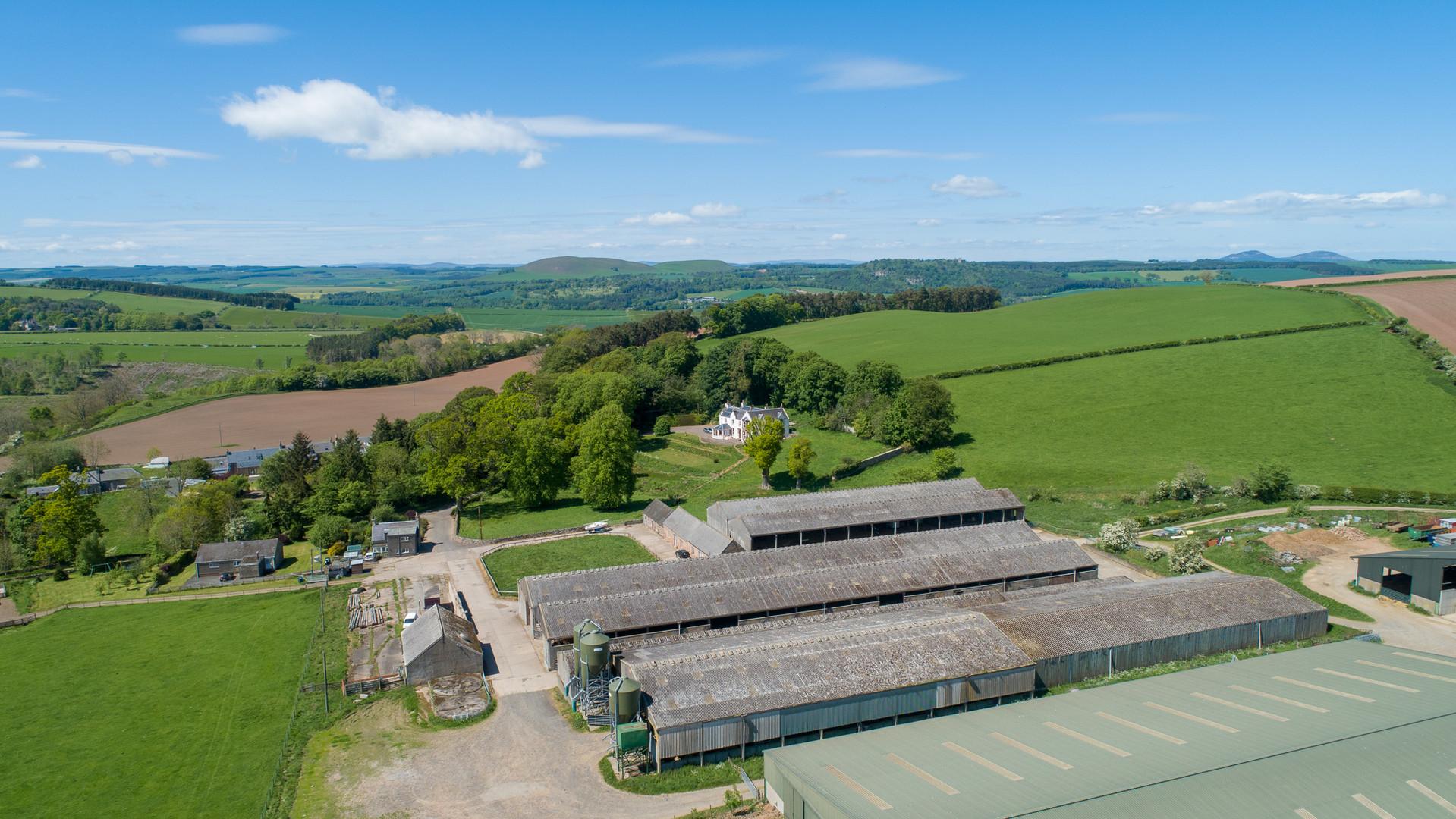 Sunny Bedrule Farm