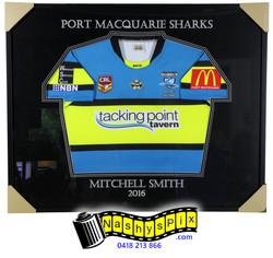Sharks 6-12-2016 A