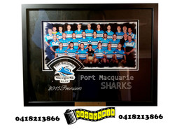 Sharks Framed Team Photo