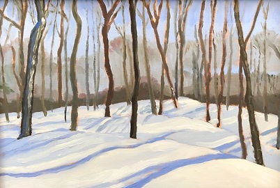 Looking into a deciduous forest in winter with long shadows on snow in sunlight
