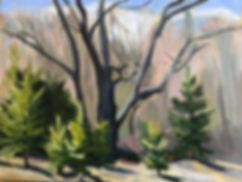 TreeNursery.oil.9x12.jpg