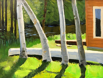 fFour white birch trunks and a white canoe and shadows with a green lake in back
