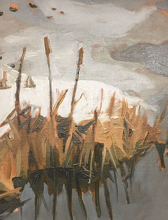 Melting ice in early spring on a grey day. Bullrushes and marsh grass are yellow and brown.