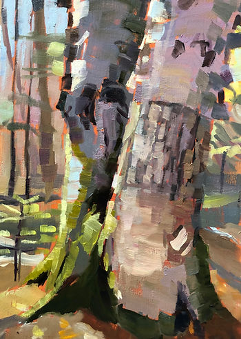 pbell.oldbirch..oil.11x14.jpg
