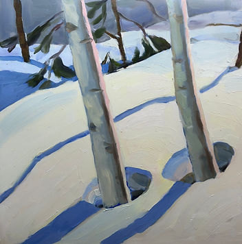Two birch trees cast blue shadows in bright snow.
