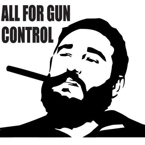 ALL FOR GUN CONTROL Gun Decal Sticker