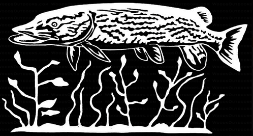 Pike at Home Fishing Decal Sticker