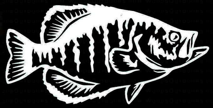 CRAPPIE Fishing Decal Sticker