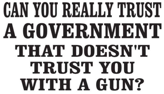 CAN YOU REALLY TRUST A GOVERNMENT THAT DOESN'T TRUST U WITH A GUN? Decal Sticker