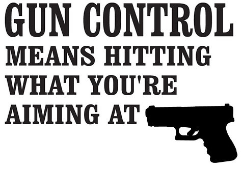 GUN CONTROL means hitting what you're aiming at Gun Decal Sticker
