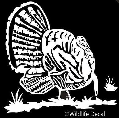 Fat Gobbler TURKEY Hunting Window Decal Sticker