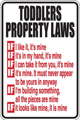 TODDLERS PROPERTY LAWS Funny Mom Sign