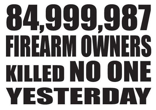 84 million firearm owners killed NO ONE Gun Decal Sticker