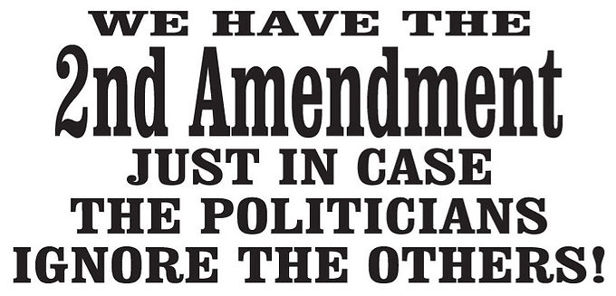 We have the 2nd amendment... Gun Decal Sticker