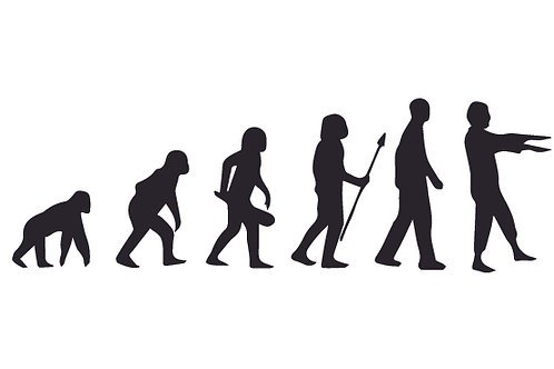 Evolution of Man to Zombie Decal Sticker