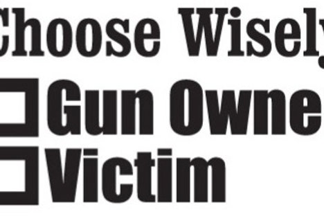 Choose Wisely, GUN OWNER - VICTOM Gun Decal Sticker