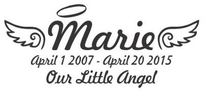 OUR LIL ANGEL wings Decal Sticker
