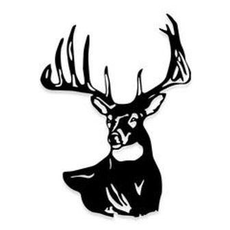 beautiful Buck Deer Hunting Decal Sticker