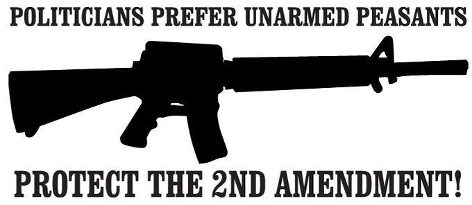 Politicians Prefer Unarmed Peasants Protect the 2nd Amendment Decal