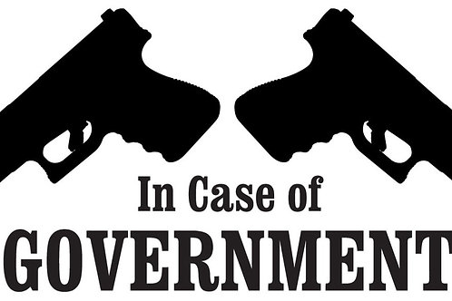 In case of GOVERNMENT Gun Decal Sticker