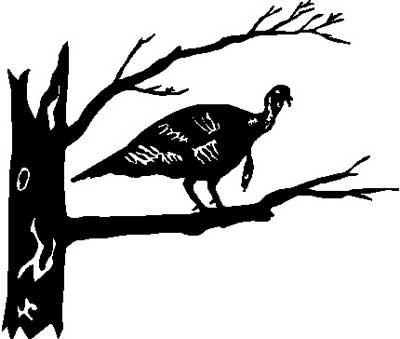 Fly Down Gobbler TURKEY Hunting Window Decal Stick 2
