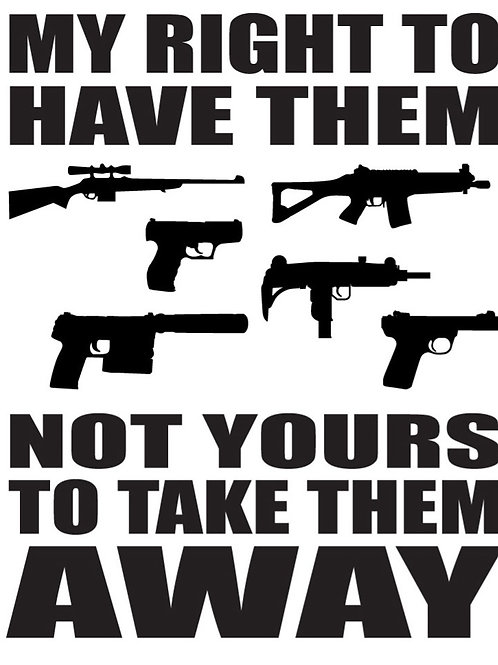 MY RIGHT TO HAVE THEM. NOT YOURS TO TAKE IT AWAY Gun Decal Sticker