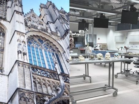 AEIMS congress in Antwerp