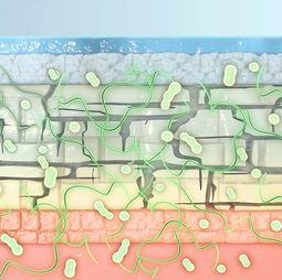 Medizinische Illustration Ciclopoli nail polish Animation