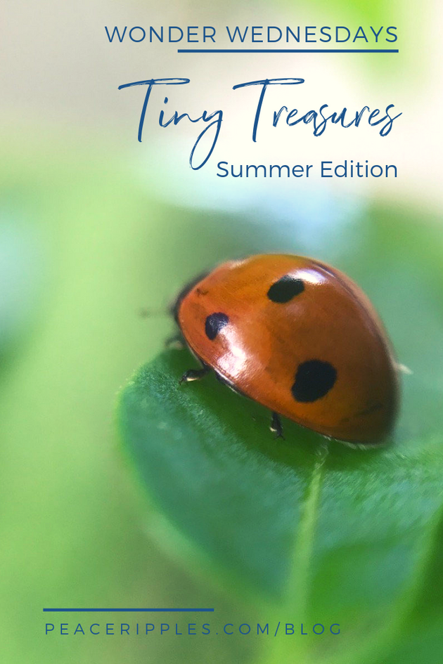 Tiny Treasures: Summer