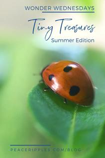 Tiny Treasures: Summer