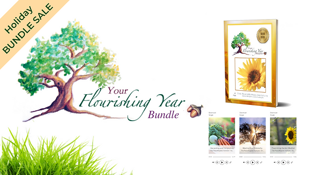 YFYB BUNDLE Sale.png