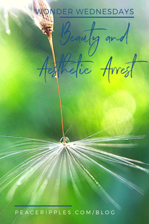 Beauty and Aesthetic Arrest