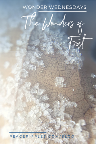 The Wonders of Frost