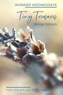 Tiny Treasures: Winter