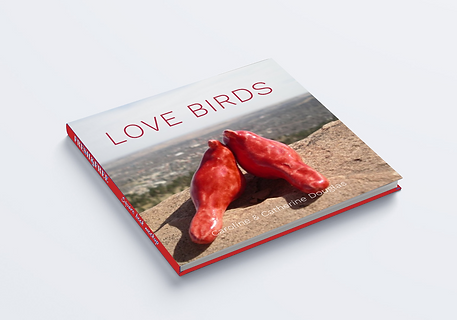 Love Birds Book Mockup.png