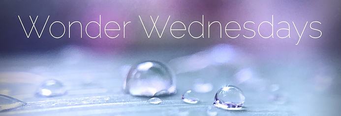 PeaceRipples Blog Wonder Wednesdays