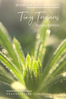 Tiny Treasures: Spring