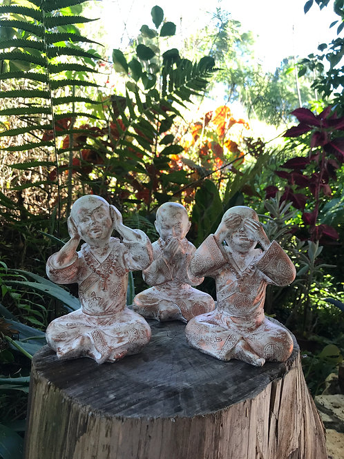 trio Budas