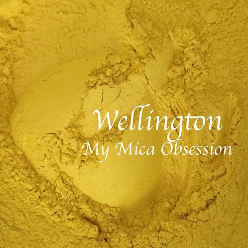 Wellington Mica