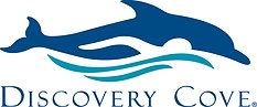 Discovery Cove- Dolphin Swim Day Resort Package