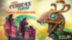 Busch Gardens Cobra's Curse