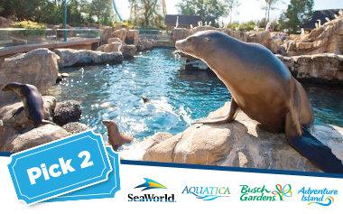 SeaWorld - 2 Visits