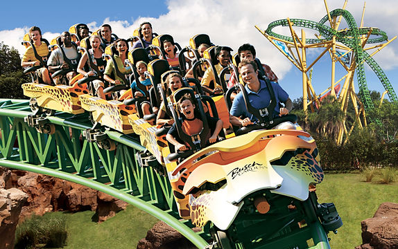 Busch Gardens Cheetah Hunt