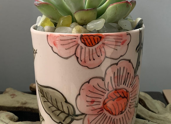 Tea Time Planter with Live Succulent