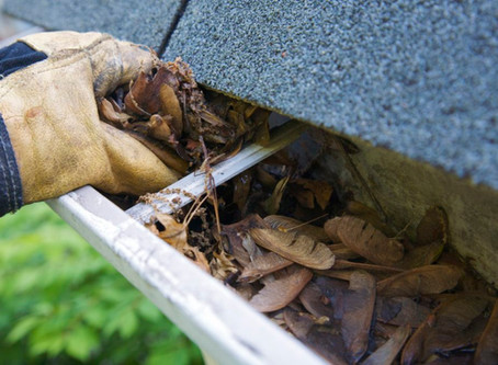 Spring Cleaning:  Your roof and Gutters