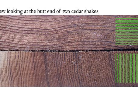 How to Identify Good Cedar