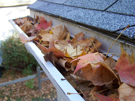 Why Do I Need to Have My Gutters Cleaned?
