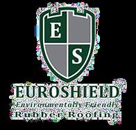 20140226_0241_euroshield_logo.png